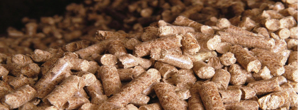 Biomass pellets US and UK