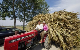 Local residents transport corn stalks to the project site, where they will be burned to generate electricity. This project utilizes surplus biomass products like corn stalks, which would otherwise be wasted, to generate clean energy. Source: Mr.Xiaodi Cai