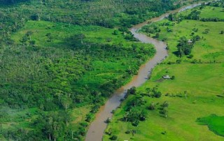Brazil_rainforest_620x300