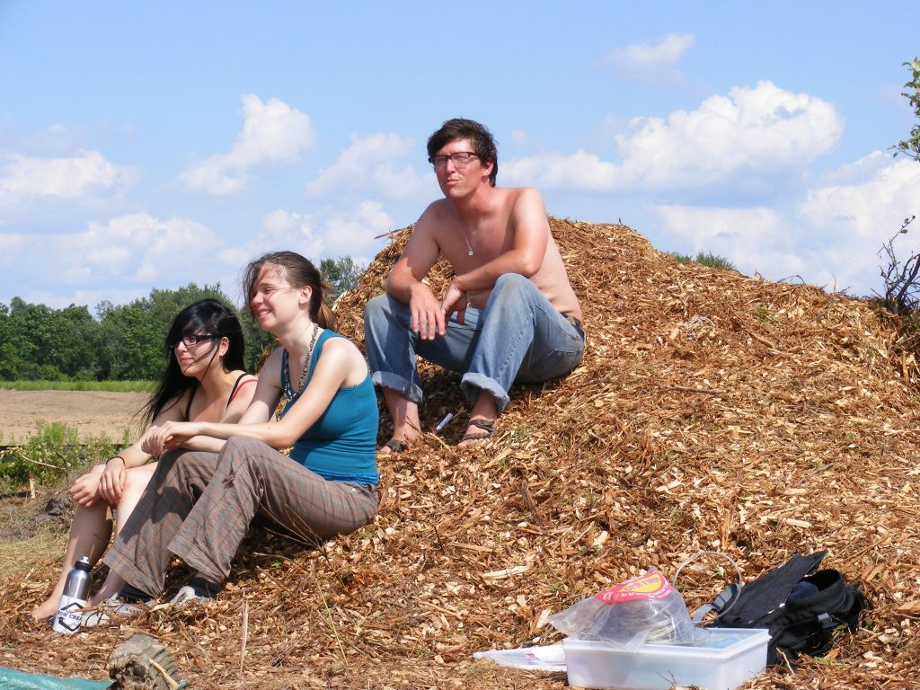 visitors_on_a_woodchip_pile_aug_1