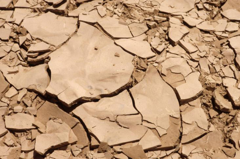 how to protect the arable land against desertification