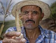 Small farmers, the most vulnerable to climatic disasters.Source: FAO